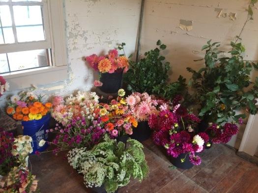 DIY locally grown wedding flowers